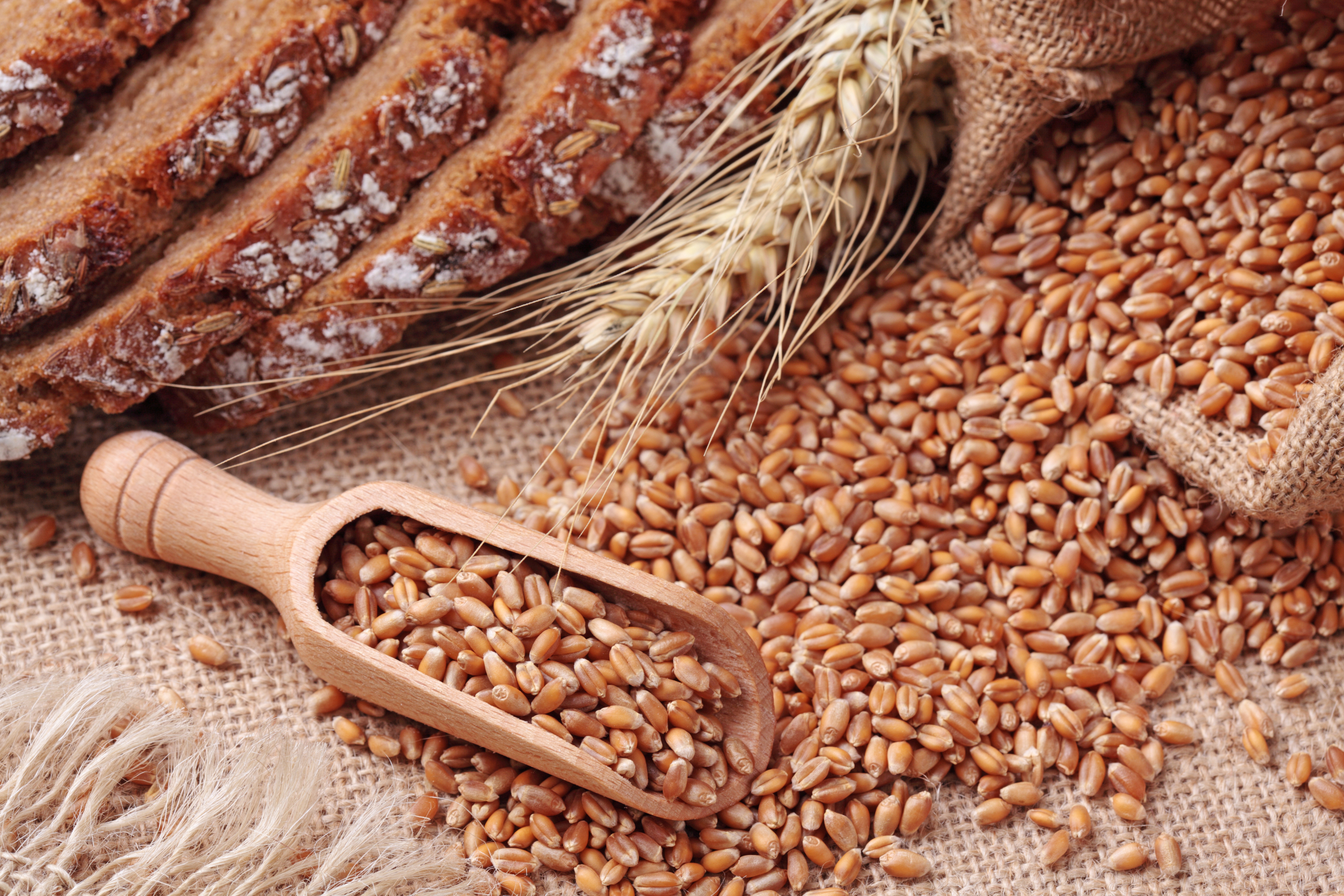 whole-grains-stock